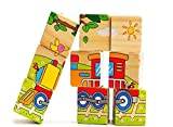 Qiaolinglong 9 Piece Colorful Wooden Block Picture Puzzle For Toddlers And Small Children
