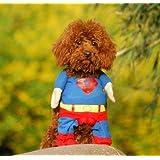 EQLEF® Superman perro de perrito del gato de Halloween Costume Ropa para mascotas Ropa de Vestir Superdog - Suministros para mascotas (Medium(cuello: 25-30cm))