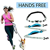 Hands Free Dog Leash Belt for Running Walking Retractable Waist Belt Lead for Runner with Bungee and Reflective Stitching