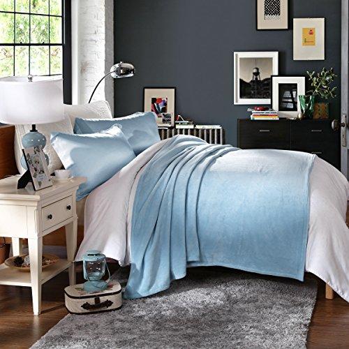 HYSEAS Coral Fleece Queen Size Plush Bed Blanket, Blue