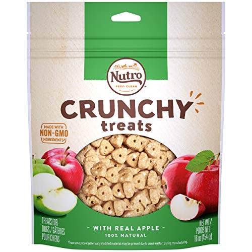 NUTRO Crunchy Dog Treats with Real Apple, 16 oz. Bag
