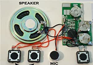 Set of 10 (20 sec.) Push Button Recordable Sound Chips