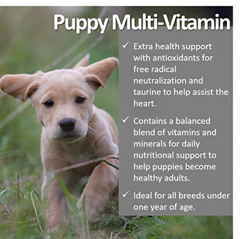 Picture of Vet Worthy Puppy Multi Vitamin Liver Flavored Chewables for Dogs (60 Count)