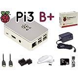 Pi3B+ スターター キット V2 RS白 16GB