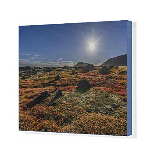 20x16 Canvas Print of Lava and moss in the autumn, Western Iceland (13293801) by Media Storehouse