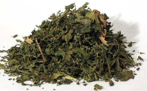 Raven Blackwod Fortune Telling Supplies Herbs Nettle Stinging Leaf cut 1oz Shield Poisonous Thoughts Intentions