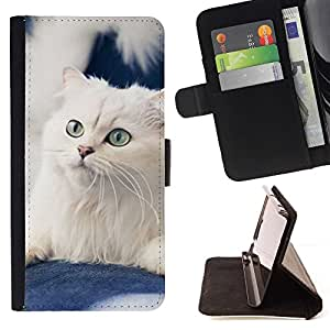 Momo Phone Case / Flip Funda de Cuero Case Cover - Blanca Curl Americano Gato noruego; - Apple Iphone 5 / 5S