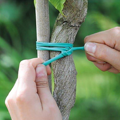 Thompson & MORGAN Suave Atado Planta elástico Soporte Para Planta ...