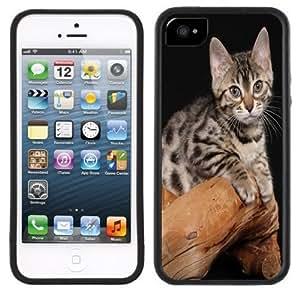 LJF phone case Bengal Kitten Cat Handmade iphone 6 plus 5.5 inch Black Case