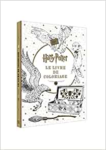 Harry Potter Le Livre De Coloriages The Coloring Book Heroes French Edition Collectif Hachette 9782012036963 Amazon Com Books