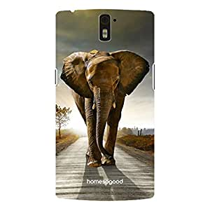 HomeSoGood Happy Feet Elephant Multicolor 3D Mobile Case For OnePlus One (Back Cover)
