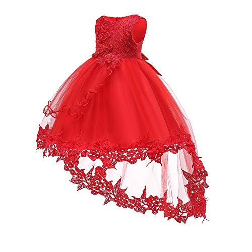 Baby Toddler Lace Dress Girls First Baptism Elegant Embroidery Wedding Party Flower Bridesmaid Dresses Up -