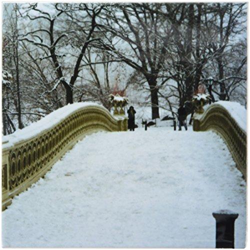 3dRose CST_10313_3 Snow Blizzard in Central Park Manhattan New York City-Ceramic Tile Coasters, Set of 4