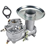 HIPA 392587 Carburetor + Gasket for Briggs & Stratton 391065 391074 391992 394745 Engine