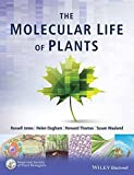 img - for Molecular Life Of Plants book / textbook / text book