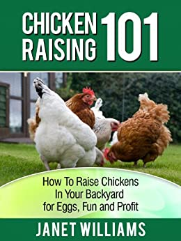 chicken raising 101 how to raise chickens in your backyard for eggs