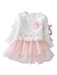 Kids Baby Toddler Girls LongSleeve Lace Flower Tulle Tutu Gown Formal Party Dress