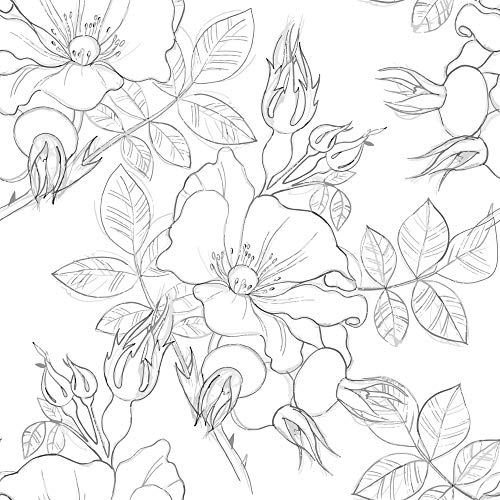 (WallsByMe Peel and Stick Charcoal and White Floral Floral Removable Wallpaper 2198-2ft x 4ft (61x122cm) - WallFab - 7mil)