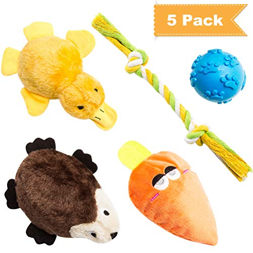 SCENEREAL Squeaky Dog Toys 5 Pack Small Puppy Interactive Chew Toy for Pets Animals Filled with TPR Ball – Duck, Carrot, Hedgehog, Rope, Ball