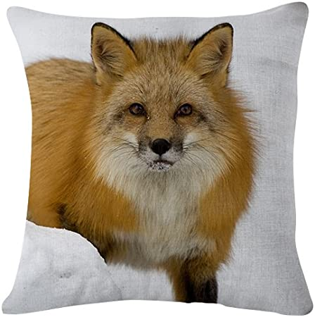 Fox Muzzle Snow Fear Winter Throw Pillow Case Cushion Cover For Sofa Couch Double Sided Printing 18x18 Inches Home Kitchen Amazon Com