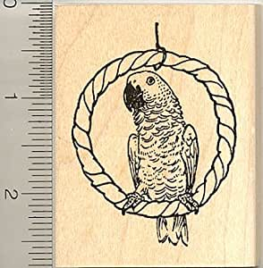 African grey parrot rubber stamp wood for Rubber stamps arts and crafts