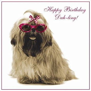 Shih Tzu Dah Ling Birthday Card Amazon Kitchen Home