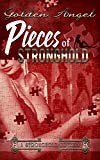 Pieces of Stronghold (Stronghold Dom Novellas Book 2)