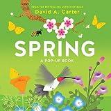 Spring: A Pop-up Book (Seasons Pop-up)