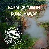 Pure Hawaiian Spirulina - Powder 16 Ounce - Farm