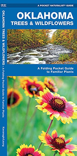 Oklahoma Trees and Wildflowers : An Introduction to Familiar