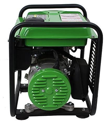 Amazon.com: Lifan ES2000-CA Energy Storm generador ...