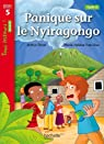Panique sur le Nyiragongo Niveau 5 - Tous lecteurs ! Romans - Livre élève - Ed. 2014 par Ténor