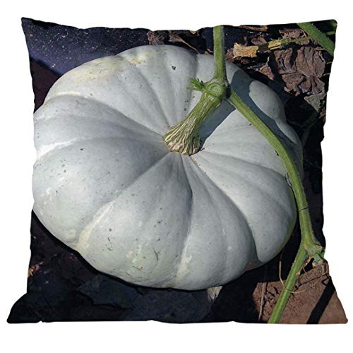 YOcheerful Halloween Pumpkin Cusion Cover Sofa Bed Car
