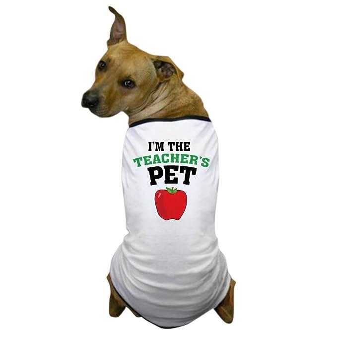 fb7fd73fa Amazon.com : CafePress - Teacher's Pet Dog T-Shirt - Dog T-Shirt, Pet  Clothing, Funny Dog Costume : Pet Supplies