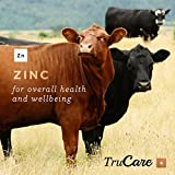 TruCare 4 Top-Dress Trace Mineral Blend for