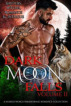 Dark Moon Falls vol 2