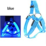 LED USB Rechargeable Dog Vest Harness Revolutionary Illuminated and Reflective Harness for Dogs (USB Rechargeable, Adjustable, Lightweight, Rainproof)