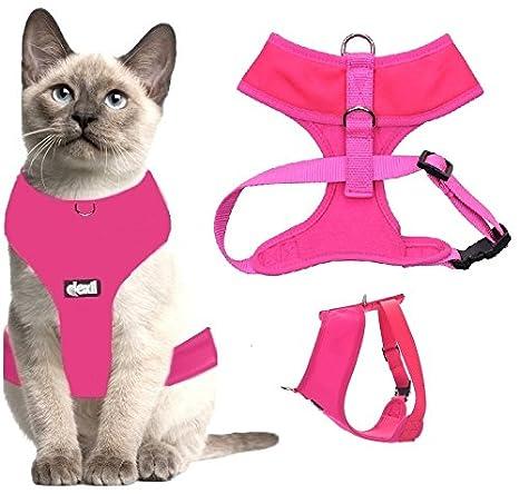 Arnés de lujo para gato acolchado y resistente al agua Dexil.: Amazon.es: Productos para mascotas