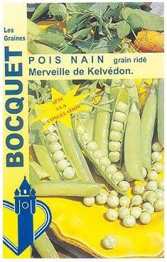 Graines De Pois Nain Merveille De Kelv/édon 200G Les Graines Bocquet Graines Potag/ères /À Semer Sachet De 200Grammes