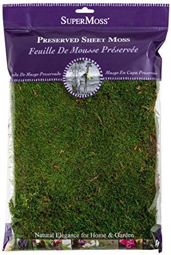 Super Moss 21512 Preserved Sheet Moss, Fresh Green, 8oz (200 cubic inch)