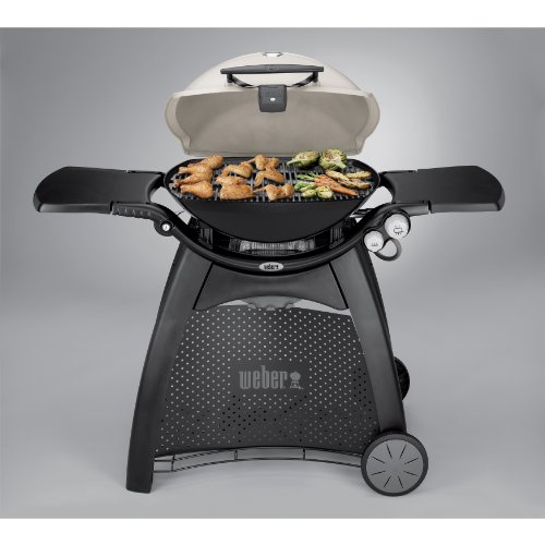 weber 57060001 q3200 liquid propane grill lawn patio in the uae see prices reviews and buy. Black Bedroom Furniture Sets. Home Design Ideas