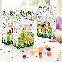 Amazon.com: Cajas de regalo de fiesta de animales de ...