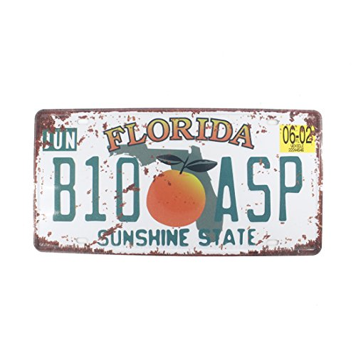(6x12 Inches Vintage Feel Rustic Home,bathroom and Bar Wall Decor Car Vehicle License Plate Souvenir Metal Tin Sign Plaque (FLORIDA B10 ASP))