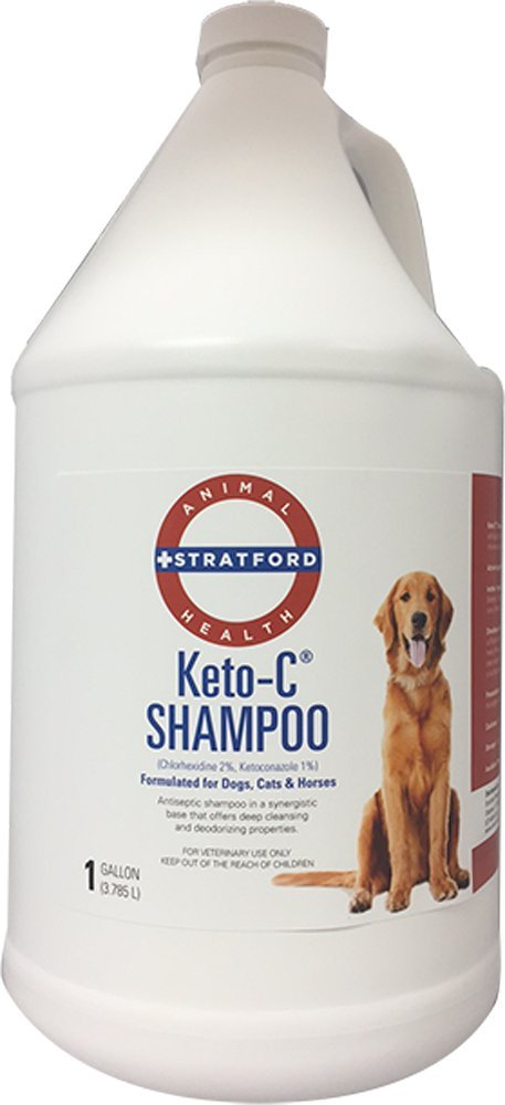 Stratford Pharmaceuticals KETO-C Medicated Shampoo - Chlorhexidine w/Ketoconazole and Aloe (Antibacterial & Anti-fungal) for Dogs, Cats, and Horses - A Pleasant Cumber Melon Scent! (1 Gallon)