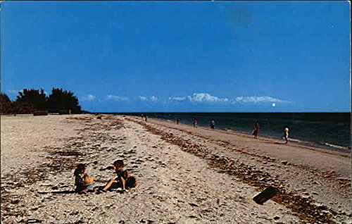 Children Shelling on Beach Sanibel Island, Florida Original Vintage Postcard