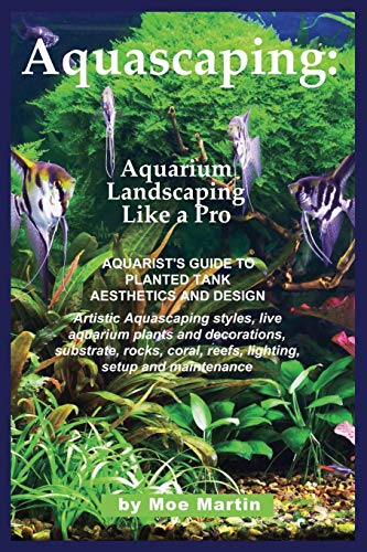 Aquascaping: Aquarium Landscaping Like a Pro