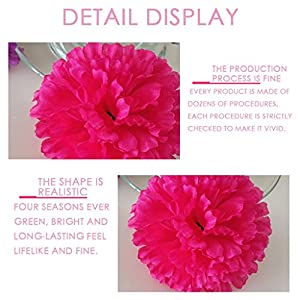Silk Carnations Artificial Fake Hydrangea Decor Flower Bouquets Weddings Cemetery Crafts Wreaths Floral Arrangements Flowers Party Home Decor or Office 10pcs(Pink,Hot Pink,White,Red) 5
