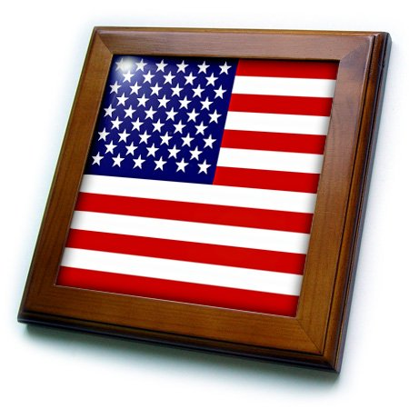 American Flag Tile (3dRose ft_112805_1 American Flag-Patriotic USA Stars and Stripes Red White and Blue-4th July America Patriot-Framed Tile, 8 by 8-Inch)