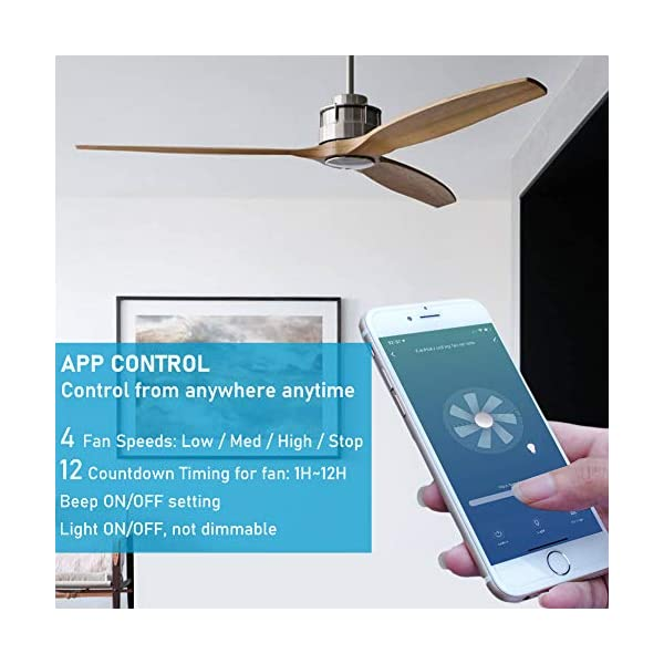 Smart Wifi Ceiling Fan Remote Control Kit Small Size And Universal 4 Speeds And 12 Countdown Timing Compatible With Blinkee Com