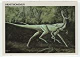 Ornithomimus - Dinosaurs: The Mesozoic Era (Trading Card) # 39 - Redstone Marketing 1993 Mint